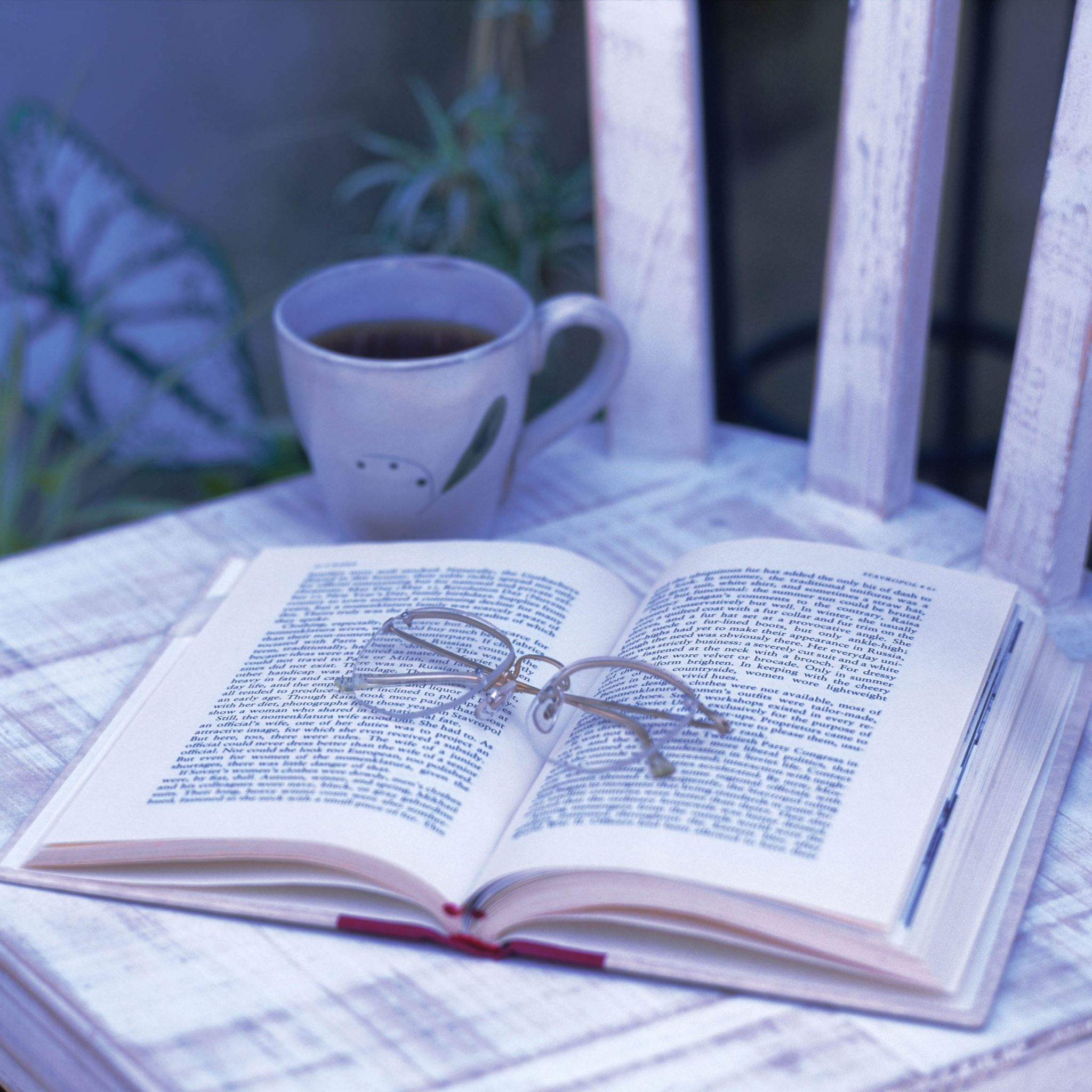 book_glasses_tea_chair_cup_garden